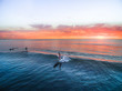 Quadro Surfing - Longboard Sunset