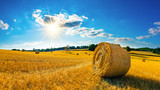 Landscape in summer with hay bales on a field and blue sky with bright sun in the background - 216317504