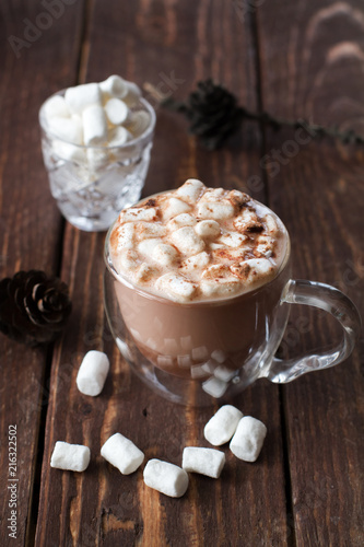 Canvas Chocolade Glass cup of cocoa with marshmallow