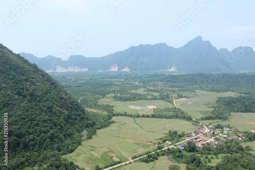 Foto Spatwand Olijf 山