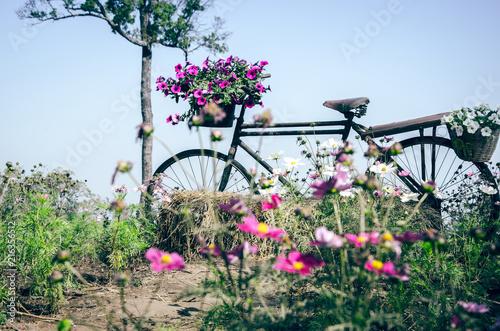 Foto Spatwand Fiets Flower bicycle parked in the garden.