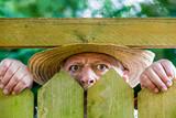 ein neugieriger Nachbar sieht über den Gartenzaun - 216364576