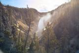 Viste del Fiume Yellowstone nel parco Nazionale