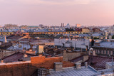 View from the roofs to St. Petersburg, the sights of the city from a height - 216417752