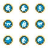 Marmoset icons set. Flat set of 9 marmoset vector icons for web isolated on white background