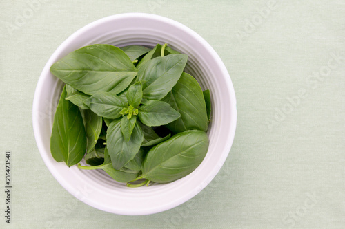 Fresh basil leaves in a bowl and presented on a green background with copy space