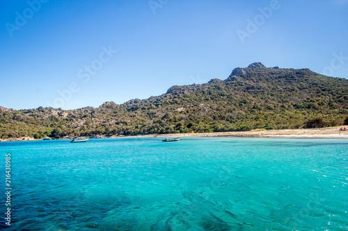 In de dag Tropical strand Corsican beach