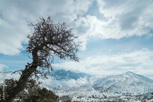 Foto Murales Rock landscape