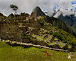 Llama standing guard in front of Machu Picchu with Huayna Picchu looming in the background- a destination for a bucket list trip