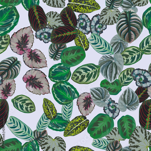 Multicolor leaves pattern seamless light gray background