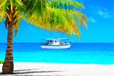 Dream beach with palm on white sand and sailing yacht in turquoise ocean - 216518949