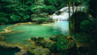 beautiful waterfall in green forest - 216524509
