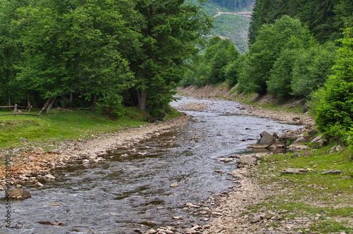 In de dag Bergrivier Mountain stream in the Ukrainian Carpathians