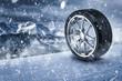 Quadro Winterreifen im Schneesturm