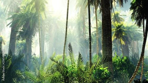 Tropikalna dżungla we mgle. Palmy rano.