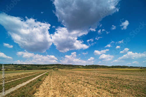 Canvas Landschappen Landwirtschaftliche Landschaft mit Quellwolken