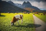 Bavarian landscapes in autumn