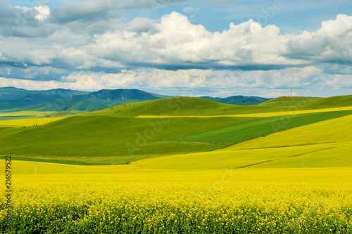 Canvas Oranje Hulunbuir grasslands of inner Mongolia.