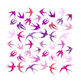 Swallows, background for your design - 216583141