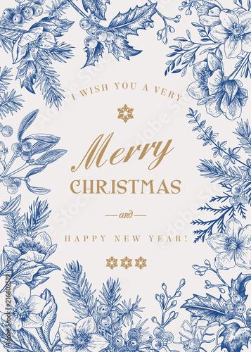 Christmas botanical card. - 216602519