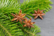 Star anise lying on fir branch - 216602964