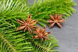 Star anise lying on fir branch