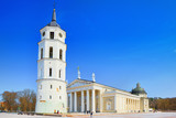 St. Stanislaus Cathedral on Cathedral Square with Monument to Grand Duke Gediminas in Vilnus. - 216603349