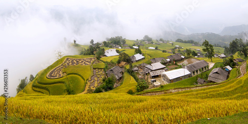 Canvas Honing Vietnam terrace rice field