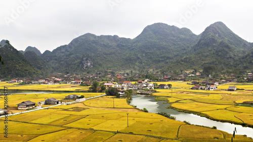 Canvas Wit Vietnam terrace rice field