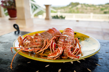 Prepared lobster on a plate outdoors © Castenoid