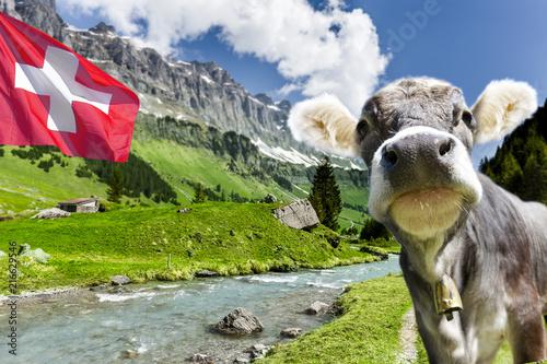 Leinwandbild Motiv Schweizer Berge