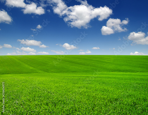 Leinwanddruck Bild green field and clouds