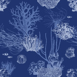 Seamless pattern with hand drawn coral reef - 216661997