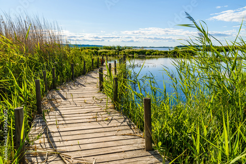 Aluminium Pier Wooden jetty in reedbed and a view of lake Takern in Sweden, on a sunny summer evening.