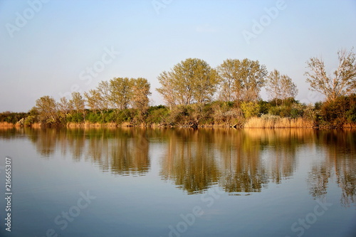 Fotobehang Herfst Autumn Colorful Trees Reflecting in Tranquil River