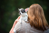 puppy sitting on the shoulder of a woman