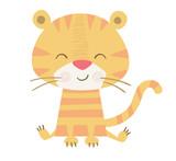 Tiger baby print