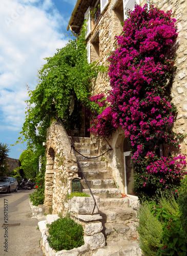 Saint-Paul-de-Vence - Bougainvillea vines on the wall © Veniamin Kraskov