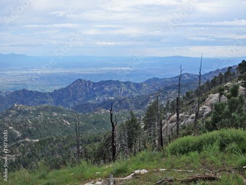 Foto Spatwand Blauwe hemel Scenic View on Mount Lemmon in Tucson