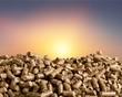 Pellets Biomass on background