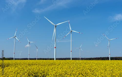 Leinwanddruck Bild Wind power plants in a field of blooming oilseed rape seen in rural Germany