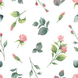 Watercolor vector hand painting seamless pattern of rose flowers and green leaves. - 216794550