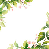 Watercolor vector hand painting card of peony flowers and green leaves. - 216794575