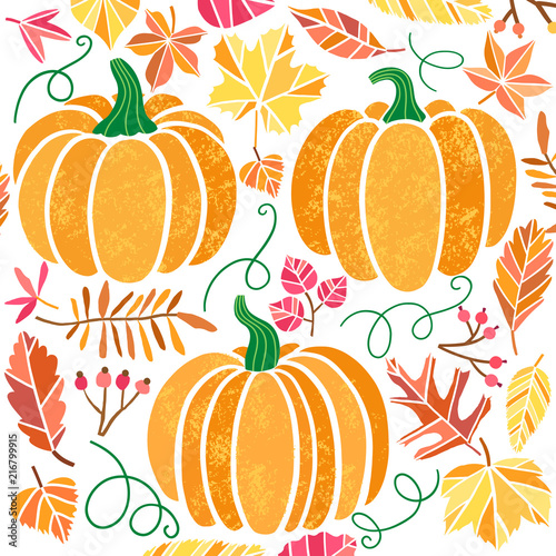 Vector pumpkin illustration set isolated on white - 216799915
