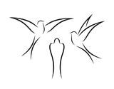 Swallow outline. Isolated swallow on white backgroun. Bird - 216801328