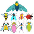 set of insects, beetles character - 216807308