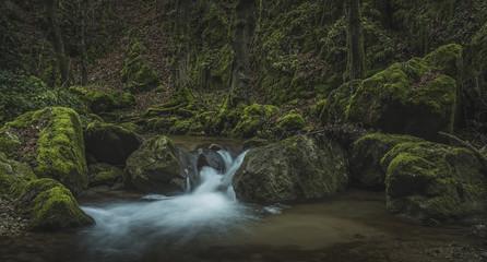 austrian jungle canyon © Markus