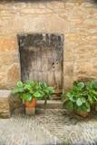Puertas antiguas - 216813356