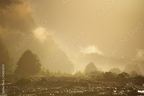 Fotobehang Beige Golden mist in the valley of a mountain river at dawn