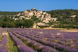 The village of Simiane-la-Rotonde in summer with lavender fields. Alpes-de-Hautes-Provence, Alps, France - 216829585